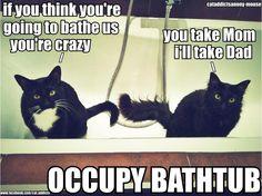occupy bathtub