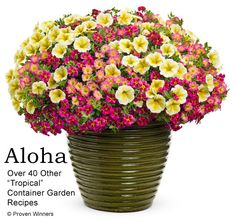 How To Create Colorful Container Garden: Use A Recipe
