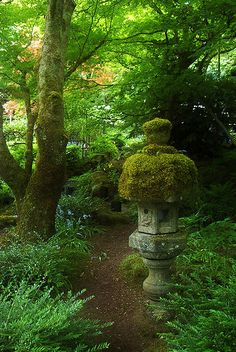 Moss covered lantern..