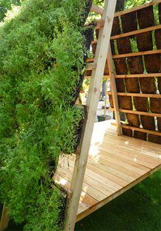 plant, vertic garden, tile, urban garden