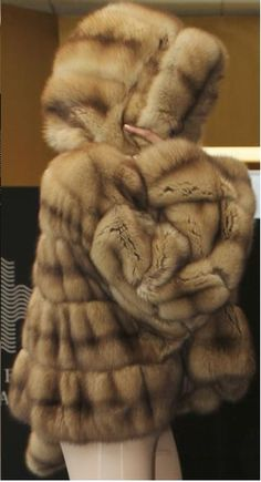 stunning golden sable fur with hood