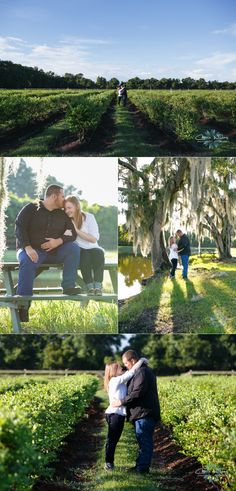 7_15_14 Wishing Well Barn Engagement_0002.jpg