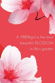 #JapaneseCherryBlossom natural skin, skin care, natur skin, sensat scent, nautral skin, fragranc fanat, smooth skin, bodi work