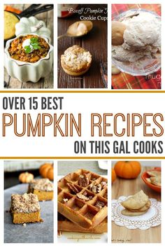 Over 15 Best Pumpkin Recipes on This Gal Cooks