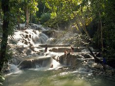 Climb the cascading waterfalls of Dunn River Falls, Falmouth, Jamaica.