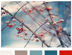 Color inspiration color palettes, winter color schemes, color inspiration, winter colors, color combos, kitchen colors, color combinations, color palette winter, blue and red color scheme