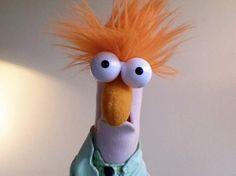 I LOVE Beaker!
