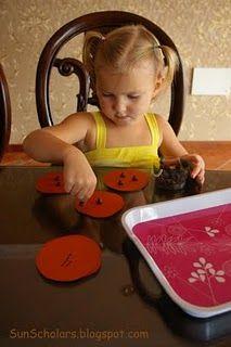 20 Preschool Activity Trays
