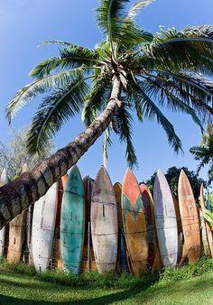 surfboard fence - love!