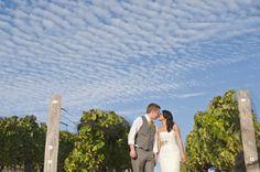 Winery Wedding In CA