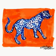 On the print prowl #lilly5x5