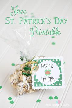 stpatricksday printabl, printables, stpatti, free st, craft idea, st patricks day, partyfavor, gold kiss, justforwomen craft