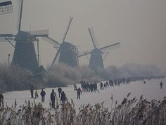 Love most anything Dutch. Especially the windmills!