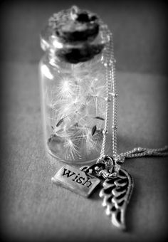 Jar of Wishes (dandelion seeds) - cute idea, via Little Musings