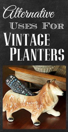 Alternative uses for those vintage planters you find at thrift stores.