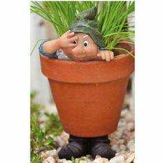 http://www.efairies.com/store/pc/Garden-Gnome-Flower-Pot-Support-Hi-243p7872.htm Price $8.95