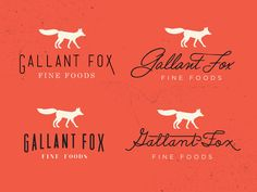 Gallant Fox Logo Concepts