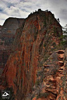 Angels Landing - Zion National Park, Utah by isaac.borrego, via Flickr