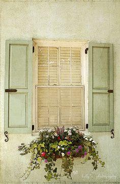 window box <3