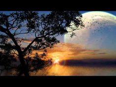 Moonlight sonata...(Ernesto Cortazar)