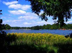 chanel handbags, london calling, hyde park, parks, lakes, travel, place, flowers garden, healthy desserts