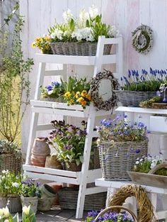 Garden display for the patio