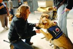 HuddleDo's Damn Fine Person of the Week: Gilroy dog trainer Mary Cortani founded Operation Freedoms Paws in 2010, the 501 (c3) nonprofit that empowers wounded veterans and others with disabilities to train and live with their own service dog has grown exponentially.