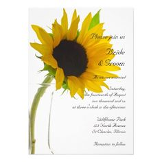 Yellow #Sunflower on White #Wedding #Invitation Invite your friends and family to your nuptials with the elegant Yellow Sunflower on White Wedding Invitation. This classy custom botanical wedding invite features a floral photograph of a yellow sunflower blossom in a glass vase with a bright white background. These pretty flowery wedding invitations are perfect for a beautiful June, July or August summer or September, October or November Fall wedding theme. http://www.zazzle.com/loraseverson*