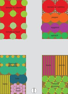 Vegetable garden plan for four raised beds (via HipChickDigs)