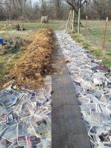 Lasagna Layers No Dig Gardening Method