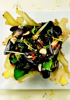 Steamed mussels #sustainable #fishing #recipes. Make sure to check out the Seafood Savvy initiative we have with the @Georgia Aquarium!