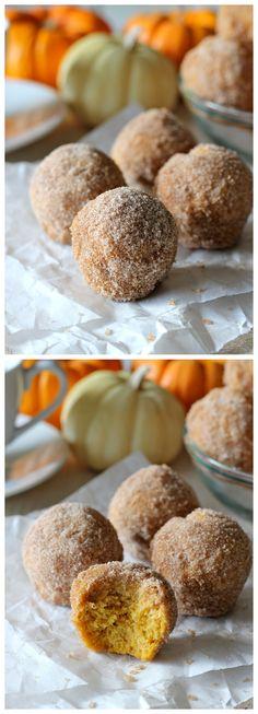 Pumpkin Donut Holes - Irresistible pumpkin mini muffins smothered in cinnamon sugar goodness! | pumpkin recipes and desserts pumpkin recipes, cinnamon sugar, pumpkin donut holes, breakfast, bread, pumpkin mini muffins, fall pumpkins, yummi food, dessert