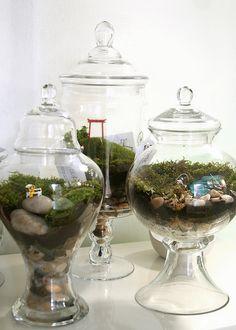 I adore Twig Terrariums... plan to take a terrarium making class in the Spring.