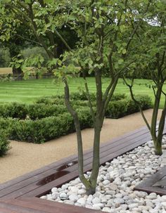 Modernist elements make up this Sussex garden by Andy Sturgeon