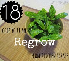 18 Foods you can regrow from kitchen scraps: Onions, Basil, Lemongrass, Bok Choy, Garlic, Pumpkin, Celery, Romaine Lettuce and Cabbage, etc