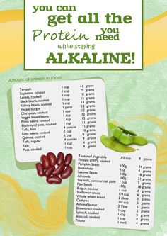 Protein Sources on an Alkaline Diet. Visit http://www.energiseforlife.com/wordpress/ for more info and resources on the Alkaline Diet. Free recipes, too!