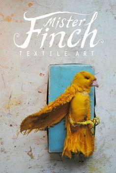 Mister Finch - bird