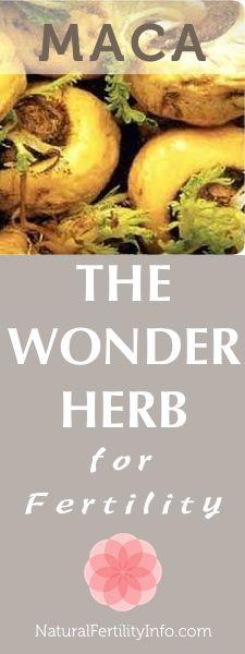 MACA, the wonder herb for fertility.