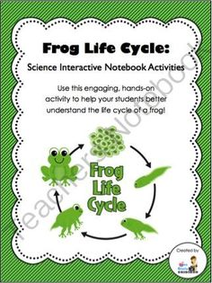 Life Cycle of a Frog - Science Interactive Notebook Activity  from 3rd Grade Gridiron on TeachersNotebook.com (10 pages)  - Looking for interactive notebook activities that incorporate science? This 10-page resource can be an engaging, hands-on activity to help your students better understand the life cycle of a frog.
