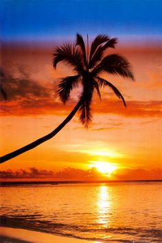 Sunset on a tropical island beach