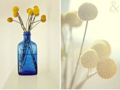 blue vases yellow flowers, bouquet, craspedia centerpiece, centerpieces with pom poms, dried flowers, billi ball, yellow pom pom flowers