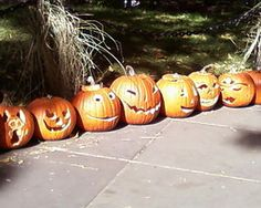 Use silica packets to keep pumpkins/gourds from molding.