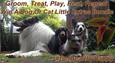 Groom, Treat, Play, Rest, Repeat. Win A Dog or Cat Little Extra's Bundle through 10/3/14. #GetHealthyHappy