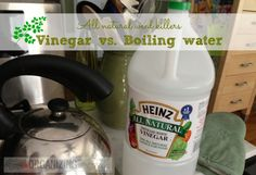 All Natural Weed Killers: Vinegar vs. Boiling Water