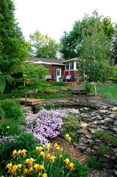A beautiful backyard garden!
