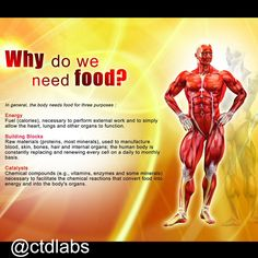 Why you need food.