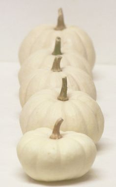 LOVE white pumkins... and cheese pumpkins.