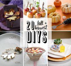 20 Beautiful Fall + Harvest DIY Ideas