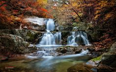 Photo Legend of fall by LEE INHWAN on 500px