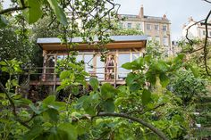 Homes - Bristol House - A view of the cabin surrounded by plants via the guardian, photo by mark bolton